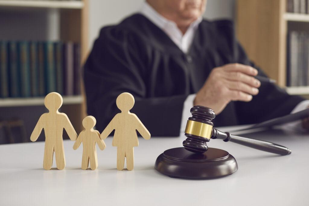 custody disagreement